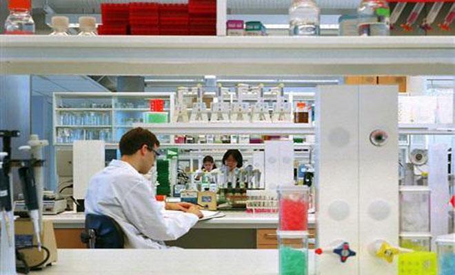 Dr. Reddy's Laboratories inside